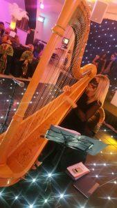 Bombay Harp - Masquarade